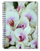 Orchid Sea Spiral Notebook