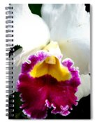 Orchid Series 2 Spiral Notebook