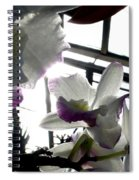 Orchid Series 4 Spiral Notebook
