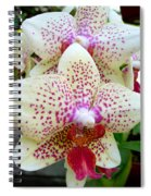 Orchid Series 5 Spiral Notebook