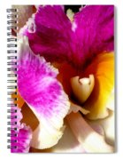 Orchid Series 6 Spiral Notebook