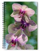 Orchid Two Spiral Notebook
