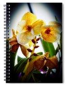 Orchid Vignette Spiral Notebook