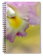 Orchid Whisper Spiral Notebook