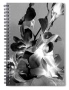 Orchids 2 Bw Spiral Notebook