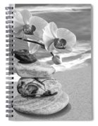 Orchids And Pebbles On The Sand In Black And White Spiral Notebook