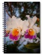 Orchid Elsie Sloan Spiral Notebook