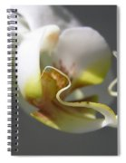 Orchid's Face Spiral Notebook