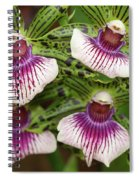 Orchids Four Spiral Notebook
