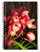 Orchids Galore Spiral Notebook