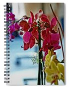 Orchids In A Window Spiral Notebook