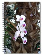 Orchids In The Opryland Hotel In Nashville Tennessee Spiral Notebook