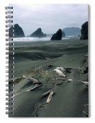 Oregon Coast 2 Spiral Notebook
