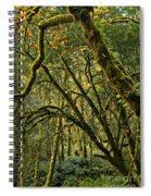 Oregon Rainforest Green Spiral Notebook