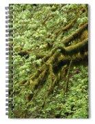 Oregon Tree Spiral Notebook