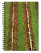 Oregon Vineyard Rows Panoramic Spiral Notebook