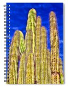 Organ Pipe Cactus Arizona By Diana Sainz Spiral Notebook