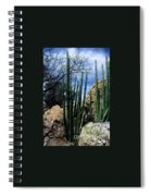 Organ Pipe Spiral Notebook