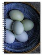 Organic Blue Eggs Spiral Notebook