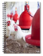 Organic Chicken Coop  Spiral Notebook