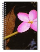 Oriental Touch  Spiral Notebook