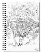 Origins Of Species Spiral Notebook