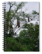 Oriole High Up In The Jungle Canopy Spiral Notebook