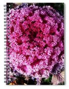 Ornamental Cabbage Plant Spiral Notebook