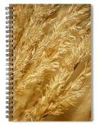 Ornamental Grass Spiral Notebook
