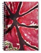 Ornamental Leaf Spiral Notebook