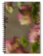 Ornamental Oregano Landscape Spiral Notebook