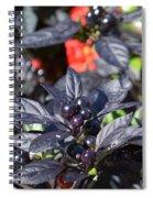 Ornamental Peppers Spiral Notebook