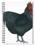 Orpington Rooster Spiral Notebook