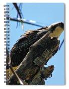 Osprey 2 Spiral Notebook