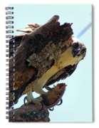 Osprey 3 Spiral Notebook