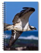 Osprey Bringing Home The Bacon Spiral Notebook