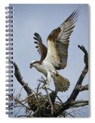 Osprey Building A New Nest Spiral Notebook