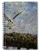 Osprey-coming Home Spiral Notebook
