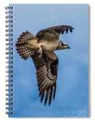 Osprey Flying Away Spiral Notebook
