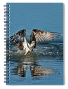 Osprey Getting Out Of The Water Spiral Notebook