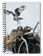 Osprey In Flight Over Nest Spiral Notebook