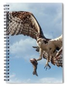 Osprey In The Clouds Spiral Notebook