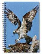 Osprey Mating Spiral Notebook