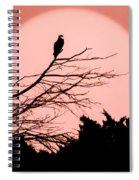 Osprey Moon Spiral Notebook