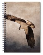 Osprey Over The Columbia River Spiral Notebook