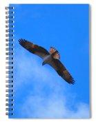 Osprey Soars Spiral Notebook