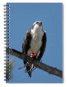 Osprey Sushi Spiral Notebook