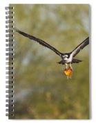 Osprey With Goldfish Spiral Notebook