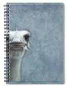 Ostriches Spiral Notebook