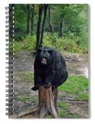 Oswald's Bear Spiral Notebook